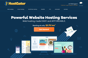 adult hosting server